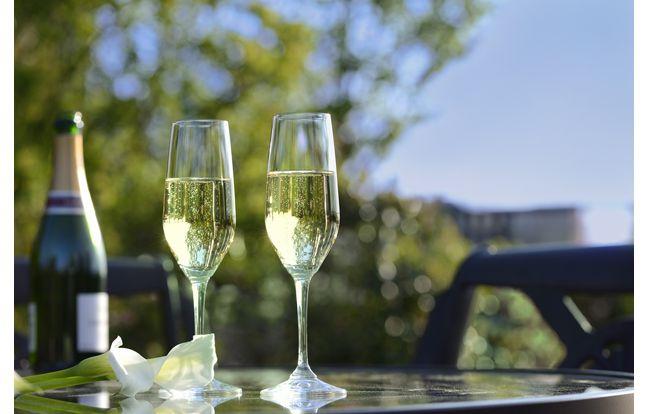 【プレゼント】ホテル椿山荘東京「シャンパンガーデン20…