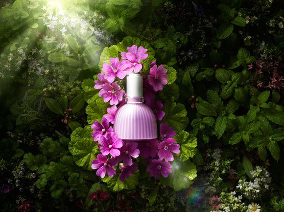 【総計105名に】花のような美容液『フラワースピリット…