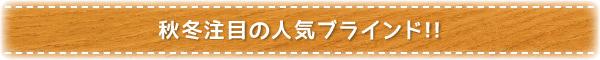 秋冬注目の人気ブラインド!!